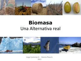 biomasa_una_alternativa_real