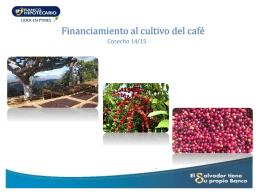 Presentación / Financiamiento al cultivo del café 2015/2016