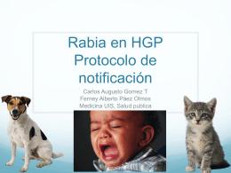 Protocolo notificacion de Rabia