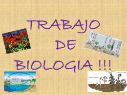 TRABAJO DE BIOLOGIA !!!