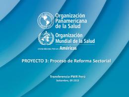 PROYECTO 3 Proceso de Reforma Sectorial (G. Vargas).