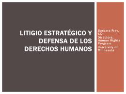 Litigio estratégico y defensa de los Derechos Humanos, por Barbara