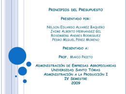 Principios del Presupuesto Presentado por: Nelson Eduerdo Alvarez