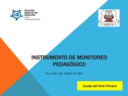 (*) Instrumento de Monitoreo Pedagógico (I parte)