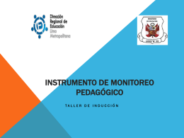 (*) Instrumento de Monitoreo Pedagógico (II parte)