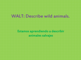WALT: Describe wild animals.