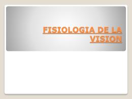Fisiología de la vision