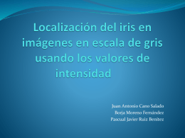 localización del iris