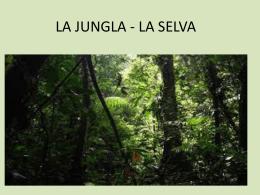 PPT Jungla - Languages.dk