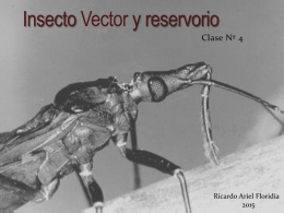 Clase 4 Insecto verctor y su reservorio ()