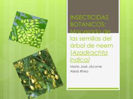 INSECTICIDAS BOTANICOS: Aceite de las semillas del árbol de neem
