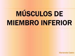 MÚSCULOS DE MIEMBRO INFERIOR