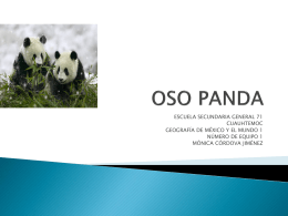 caracteristicas del oso panda