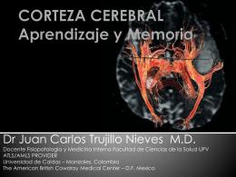 CORTEZA CEREBRAL Aprendizaje y Memoria