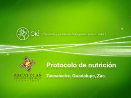 Descargue Protocolo Zacatecas 2004
