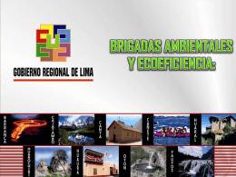 41.01 brigadas ambientales y ecoficiencia