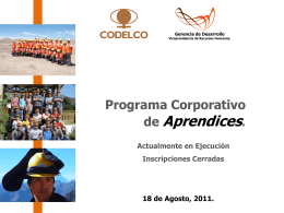 APRENDICES CODELCO