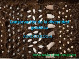 Conservación de la diversidad genética