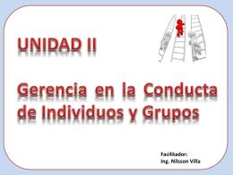 1. Conducta Individual - Ing. Nilsson José Villa Martínez