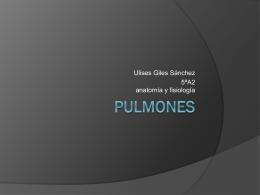 Pulmones - Anatomía y Fisiología Humana