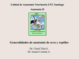 016 anatomia exoticos aves y reptiles 23_06_2014 parte 1