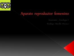 Aparato reproductor femenino - Anatomía y Fisiología Humana