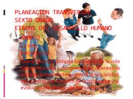 planeacion transversal sexto grado etapas del
