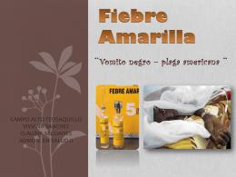 FIEBRE AMARILLA (2344418)