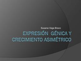 Expresión génica y crecimiento asimétrico