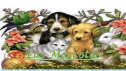 las mascotas (653637)