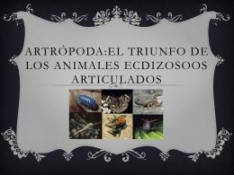 Arthropoda:El triunfo de los animales ecdizosoos articulados