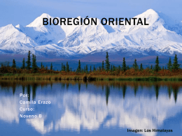 Biorregion Oriental