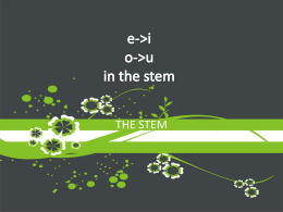 e->i o->u in the stem