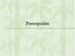 Percepcion (sternberg 3)