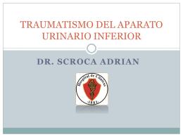 TRAUMATISMO DEL APARATO URINARIO INFERIOR