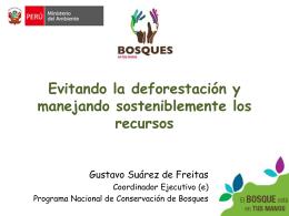 Evitando la deforestación y manejando sosteniblemente los recursos