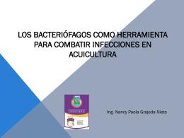 Los bacteriófagos como herramienta para combatir infecciones en