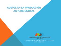 Costos en la producción agroindustrial