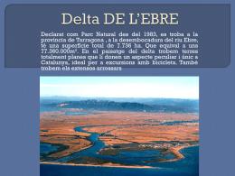 Delta DE L`EBRE lahcen