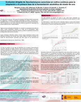Evolución dirigida de Saccharomyces cerevisiae en cultivo continuo