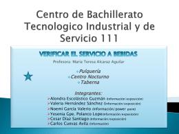 Centro de Bachillerato Tecnologico Industrial y