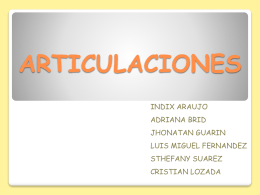 ARTICULACION - WordPress.com