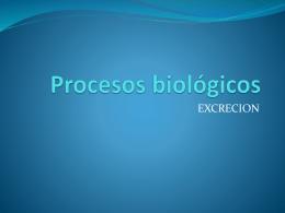 Equipo6,Nutrición,procesos biológicos(excreción),sep11