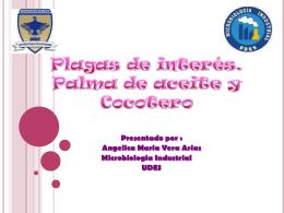 expo agro - Plagas-de
