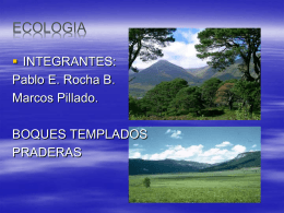 expo ecologia - WordPress.com