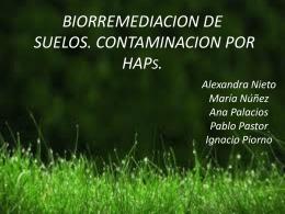 4. TÉCNICAS DE BIORREMEDIACIÓN - Quimica-Biologia-12-13