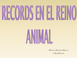 Records en el Reino Animal - Intranet IES Fuente de San Luis