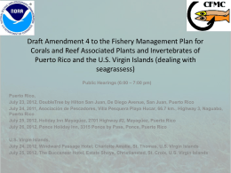 Amendment 4 to the Coral FMP: Seagrass Management