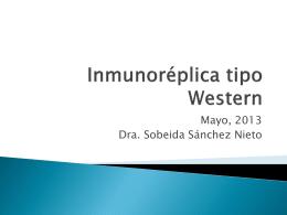 Inmunoréplica tipo Western