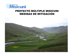 PROYECTO MÚLTIPLE MISICUNI